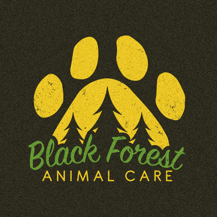 graphic design colorado springs, graphic design denver, graphic design pueblo, logo designer colorado springs, logo designer denver, logo designer pueblo, brand development colorado springs, outdoor logo design, mountain logo design, colorado logo design, veterninary logo design, veterinary logo, forest logo design