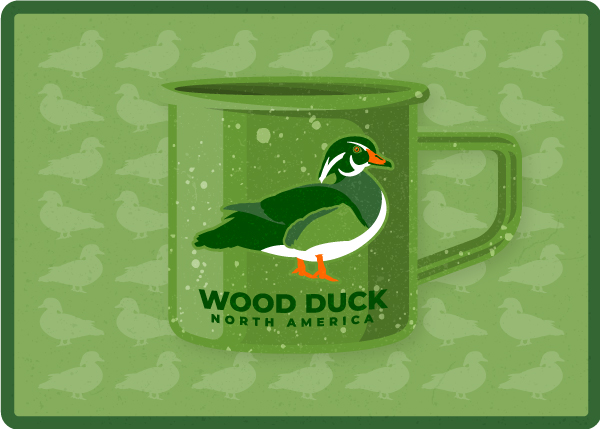 graphic design colorado springs, graphic design denver, graphic design pueblo, logo designer colorado springs, logo designer denver, logo designer pueblo, brand development colorado springs, hi-five design, hi-five design colorado springs, duck logo design, wood duck logo, coffee mug design, duck illustration, wood duck drawing, wood duck
