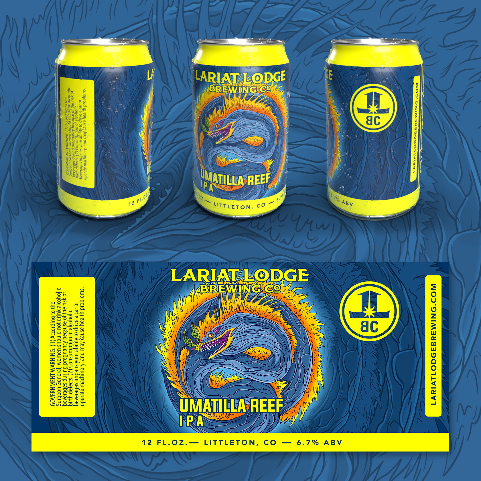 ipa beer label design, beer label design, colorado beer label, colorado beer, colorado microbeer, amber beer label, beer label design, beer can label design, hi-five design