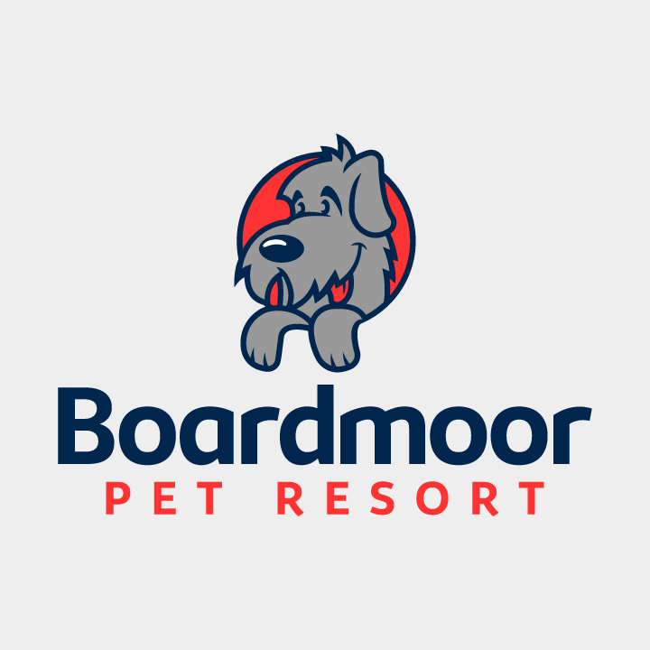 dog boarding logo design, dog boarding, dog pound logo, dog logo, irish wolfhound logo, pet logo, dog logo colorado, hi-five design colorado springs, graphic designer colorado springs