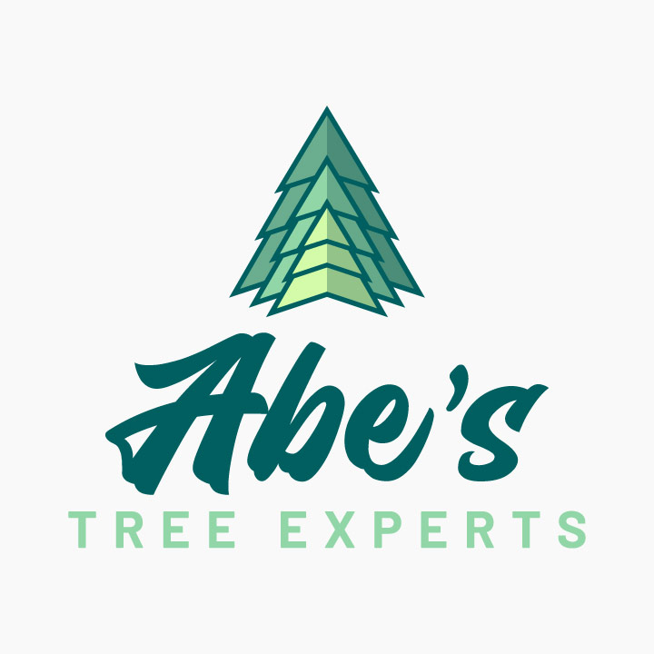 tree logo design, evergreen logo, spruce logo design, pine tree logo, hi-five design, graphic designer colorado springs, logo designer colorado springs